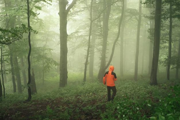 Turystyczny odprowadzenie w zielonym mgłowym lesie