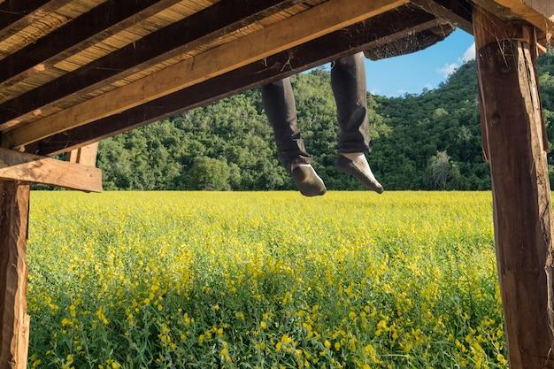 Turystyczny relaks i wisząca noga na drewnianym tarasie na plantacji crotalaria juncea l