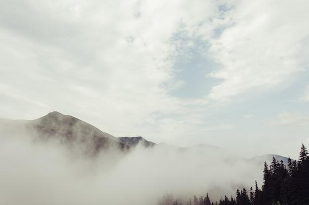 Turystyka, góry, styl życia, koncepcja natury