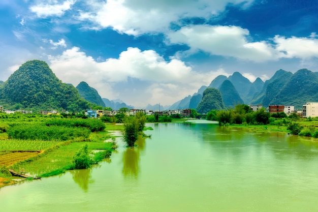 Turystyka leśna niebieski mglisty bagażnik ziemi