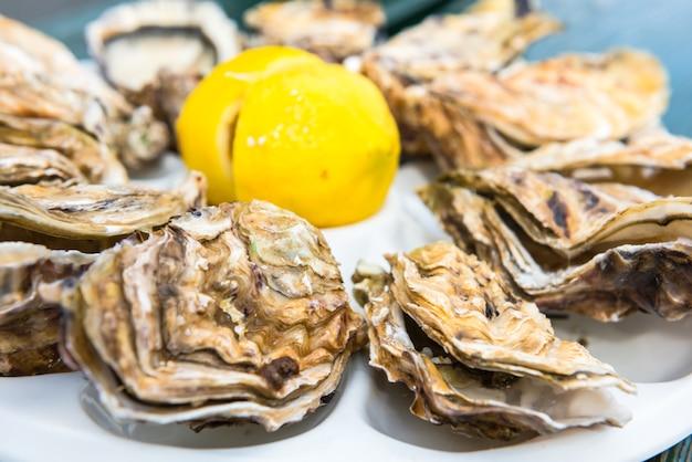 Tuzin ostryg i cytryna na plastikowym talerzu jedzący na świeżym powietrzu w pobliżu morza