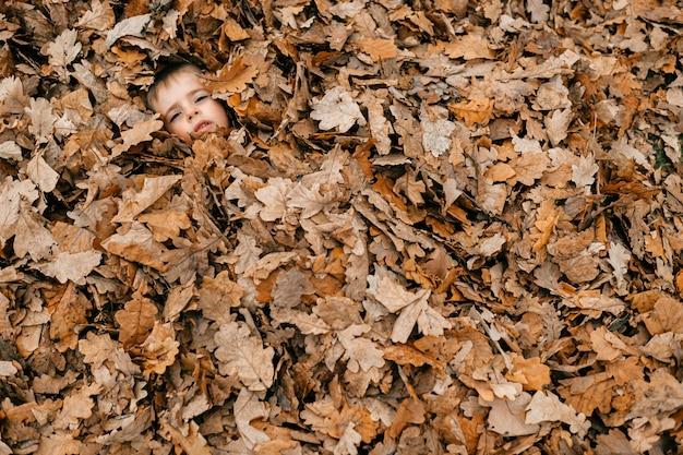 Twarz wesołego chłopca wśród liści