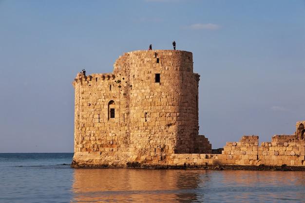 Twierdza w sidon (sayda), liban