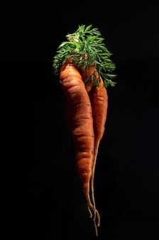 Twórczy artystyczny strzał brzydkiej marchewki na czarnym tle. orientacja pionowa