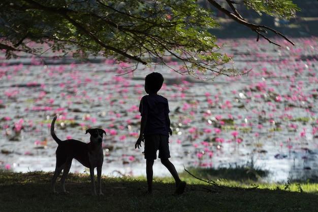 Tylni widok chłopiec pozycja na trawie z psem, krong siem przeprowadza żniwa, siem przeprowadza żniwa, kambodża