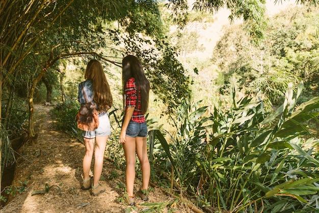 Tylni widok kobiety pozycja na drodze polnej w lesie