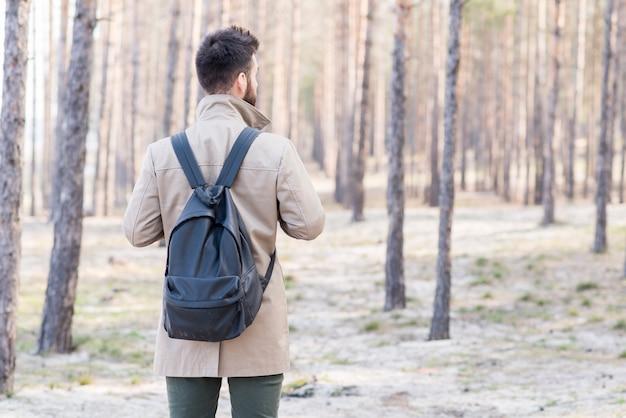 Tylni widok męski podróżnik patrzeje w lesie z jego plecakiem