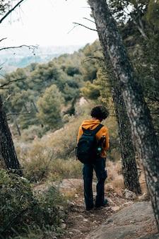 Tylni widok męski wycieczkowicz wycieczkuje w lesie