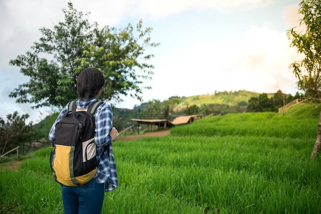 Tylny widok kobieta podróżnik z plecaka stojakiem na ryżu polu w chaing mai, tajlandia.