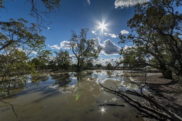Tymczasowy zbiornik wodny otoczony niskimi drzewami