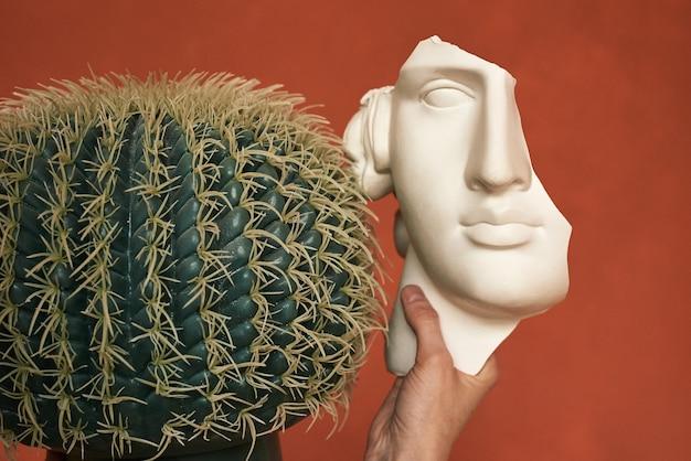Tynk głowy obok okrągłego kaktusa psychologia choroba psychiczna jako koncepcja depresji choroba afektywna dwubiegunowa