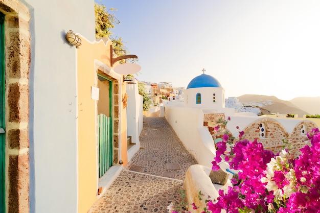 Typowa ulica oia, tradycyjna grecka wioska santorini z kwiatami