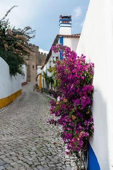 """Typowa ulica średniowiecznej wioski ã""""bidos w portugalii."""