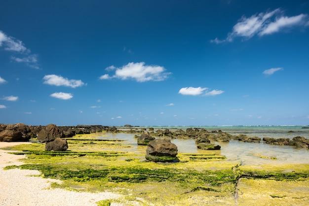 Typowe skały okinawy podczas odpływu kontrastujące z błękitnym niebem i zielenią wodorostów wyspa iriomote