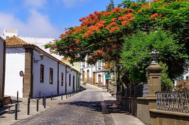 Typowe uliczki małego kanaryjskiego miasteczka z białymi domami i jasnymi kolorami. arucas gran canaria. hiszpania.