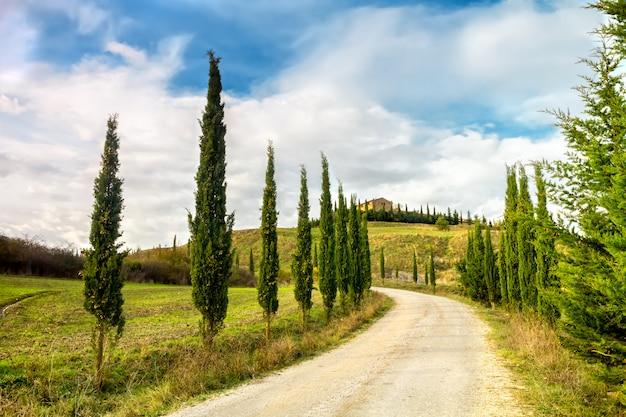 Typowy krajobraz toskanii. aleja cyprysowa prowadząca do farmy w val d'orcia.