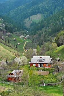 Typowy krajobraz ukraińskich karpat z prywatnymi posiadłościami. wiosną górskie drewniane chaty na wzgórzu ze świeżymi zielonymi pastwiskami.