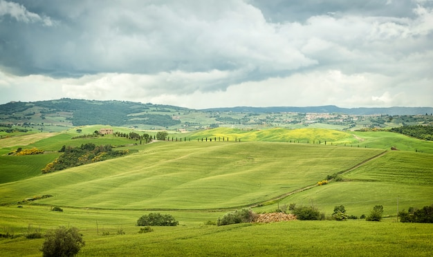 Typowy krajobraz wzgórz toskanii we włoszech