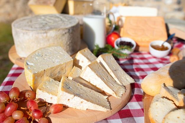 Typowy ser z taleggio valley brembana, włoskie alpy
