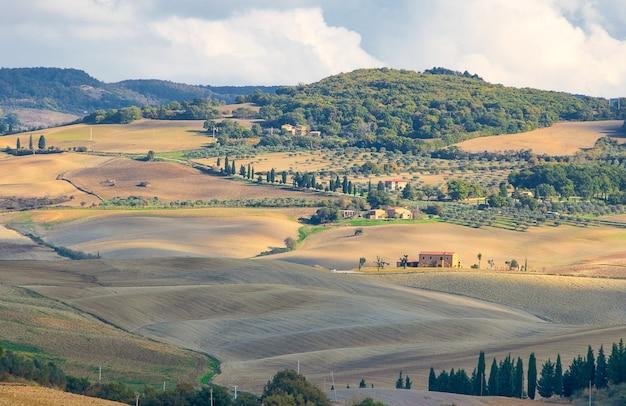 Typowy włoski krajobraz z aleją cyprysów uprawnych i polami w toskanii we włoszech