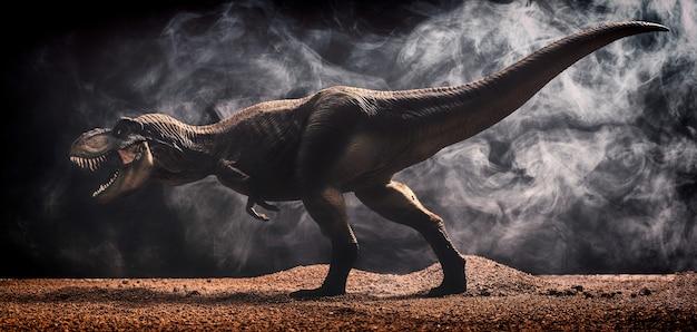 Tyrannosaurus rex izolowana czarna powierzchnia
