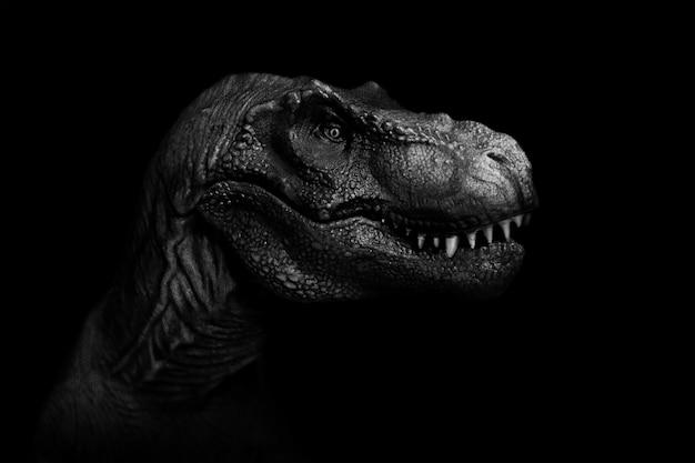 Tyrannosaurus rex z bliska na ciemnym tle.