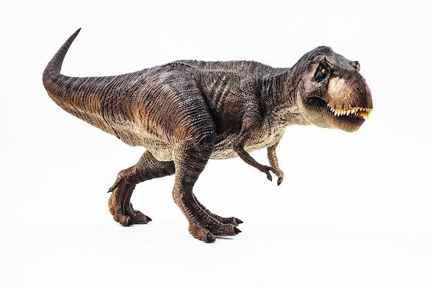 Tyrannosaurus t-rex, dinozaur na białym tle