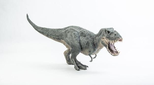 Tyrannosaurus t-rex, dinozaur