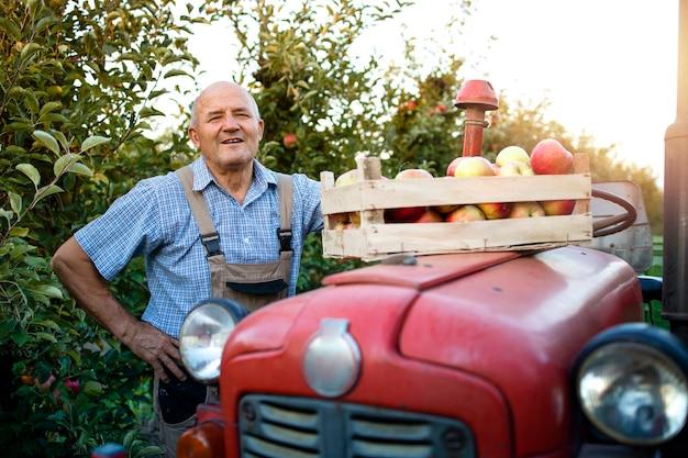 Udane zbiory jabłek.