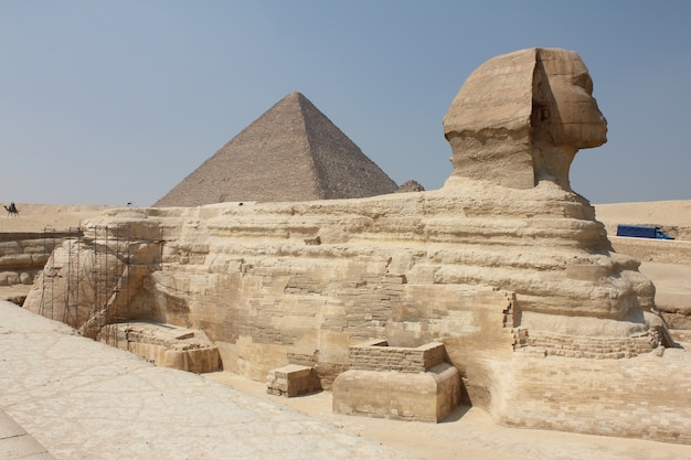 Ujęcie historycznego sfinksa w środku typowej egipskiej scenerii pod czystym niebem