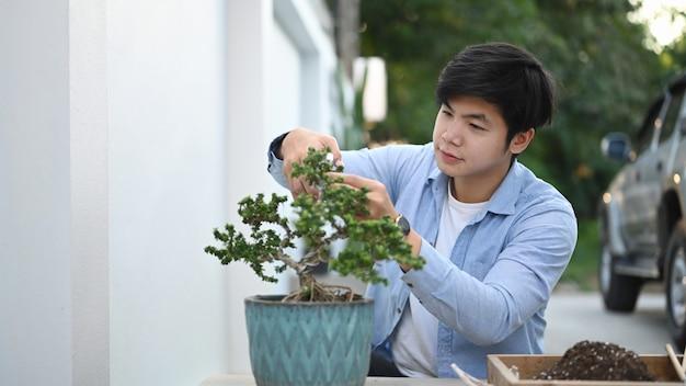 Ujęcie ogrodnika człowieka przycinanie drzewka bonsai w ogrodzie.