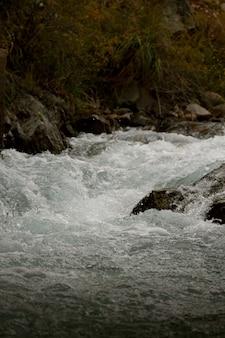 Ujęcie pięknej płynącej rzeki wiosną - świetne do tapet