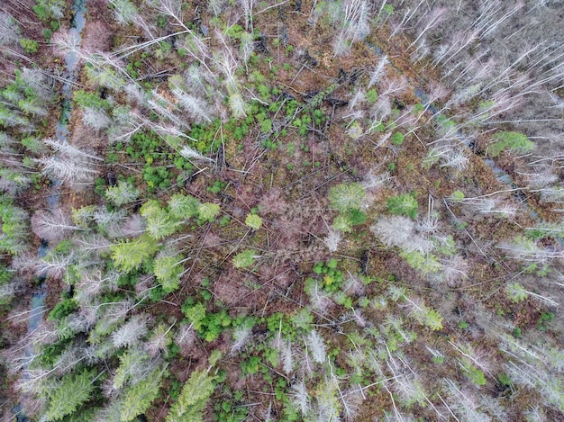 Ujęcie pod dużym kątem pola, które częściowo wyschło z powodu zmian pogody