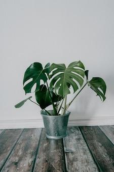 Ujęcie sztucznej rośliny doniczkowej w metalowym wiadrze