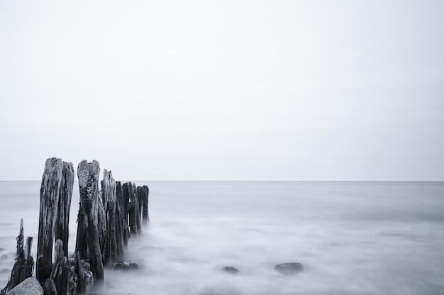 Ujęcie w skali szarości pięknego krajobrazu morskiego pod zachmurzonym niebem w ostsee, niemcy