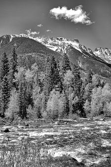 Ujęcie w skali szarości przedstawiające rzekę otoczoną górami i mnóstwem drzew pod zachmurzonym niebem