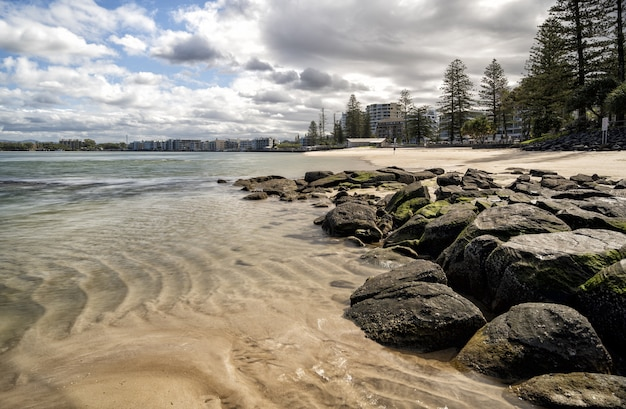 Ujęcie z poziomu oka kamieni na plaży obok drzew i budynków pod niebieskim pochmurnym niebem