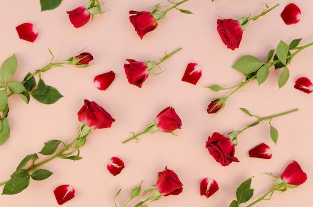 Układ czerwonych róż leżał płasko