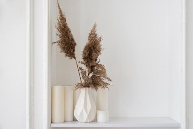 Układ dekoracji roślin domowych z miejscem na kopię