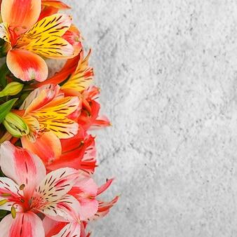 Układ karty z pozdrowieniami. bukiet pięknych różnokolorowych orchidei na jasnym tle. mocap, puste, wolne miejsce.