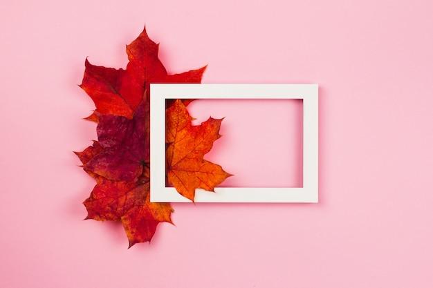 Układ kolorowych jesiennych liści jasny sezon jesień styl widok z góry kopia przestrzeń na różowo