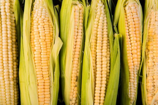 Układ kukurydzy widok z góry