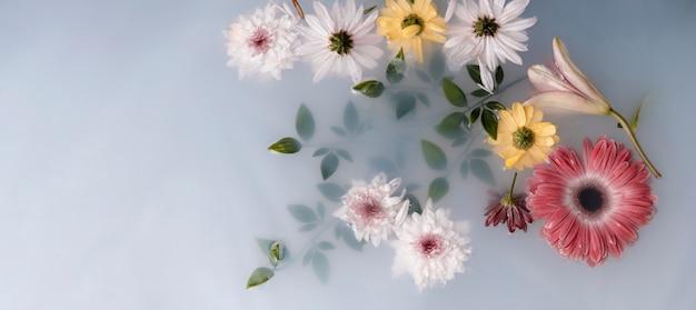 Układ kwiatów terapeutycznych