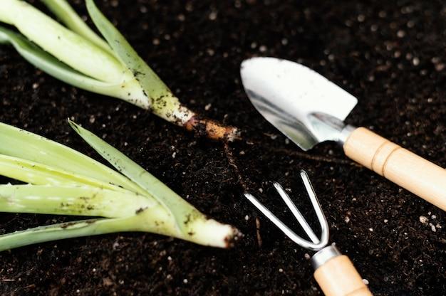 Układ narzędzi ogrodniczych pod dużym kątem