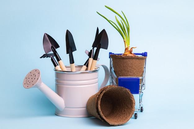 Układ Ogrodniczy Na Niebieskim Tle Premium Zdjęcia