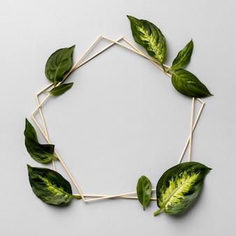 Układ ramek zielonych liści