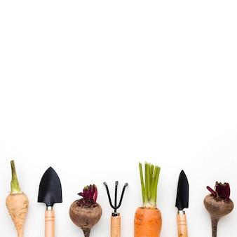 Układ różnych warzyw i narzędzi ogrodniczych w widoku z góry