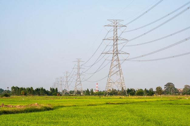 Układ słup wysokiego napięcia, wieża przesyłowa na polu ryżu na wsi