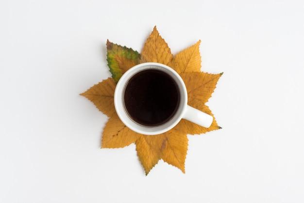 Układ z filiżanką i jesiennych liści