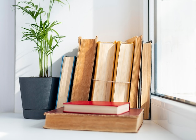Układ z książkami w pobliżu okna